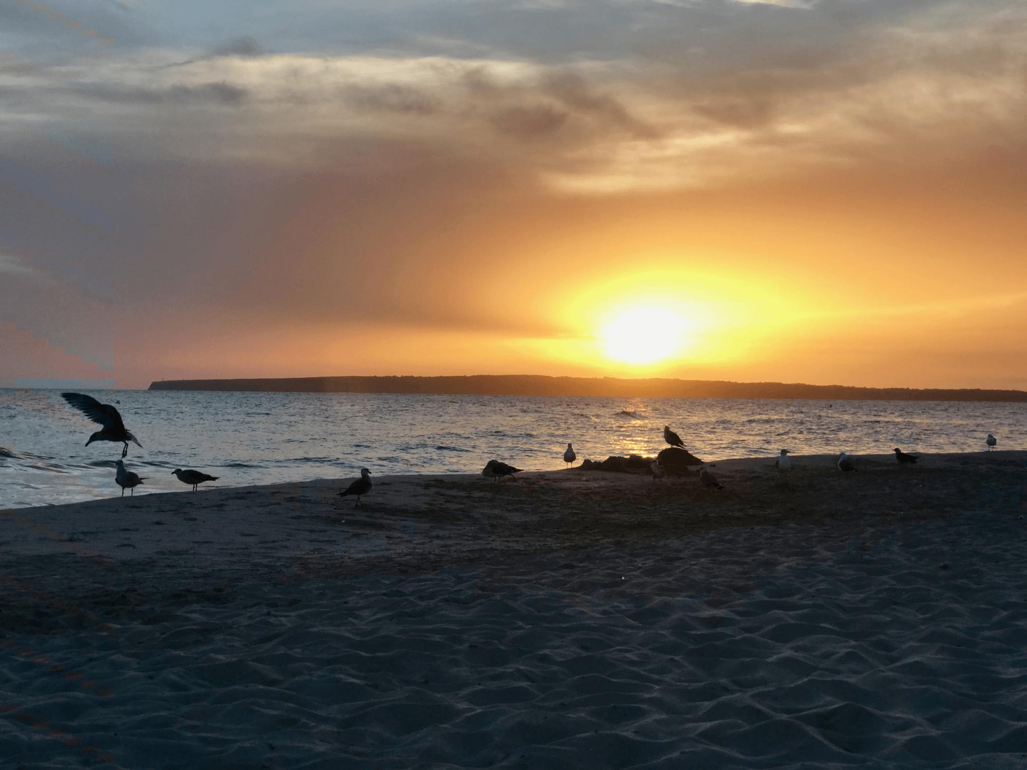 Il nostro tramonto in prima fila a Es Arenals
