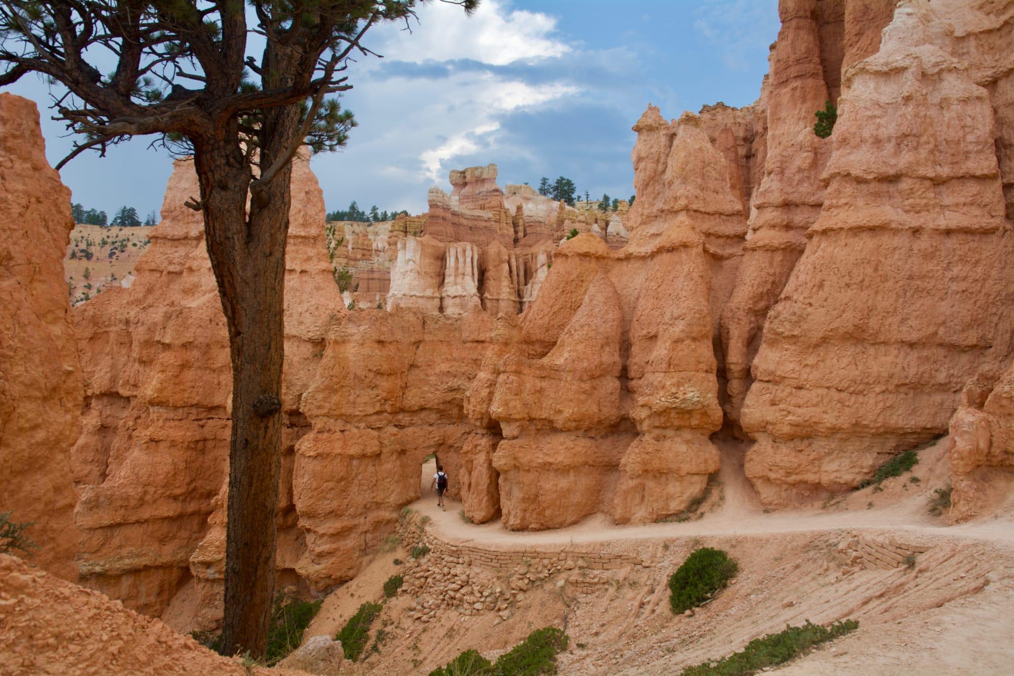 Queens-Navajo Combination Loop Trail 1, Bryce National Park