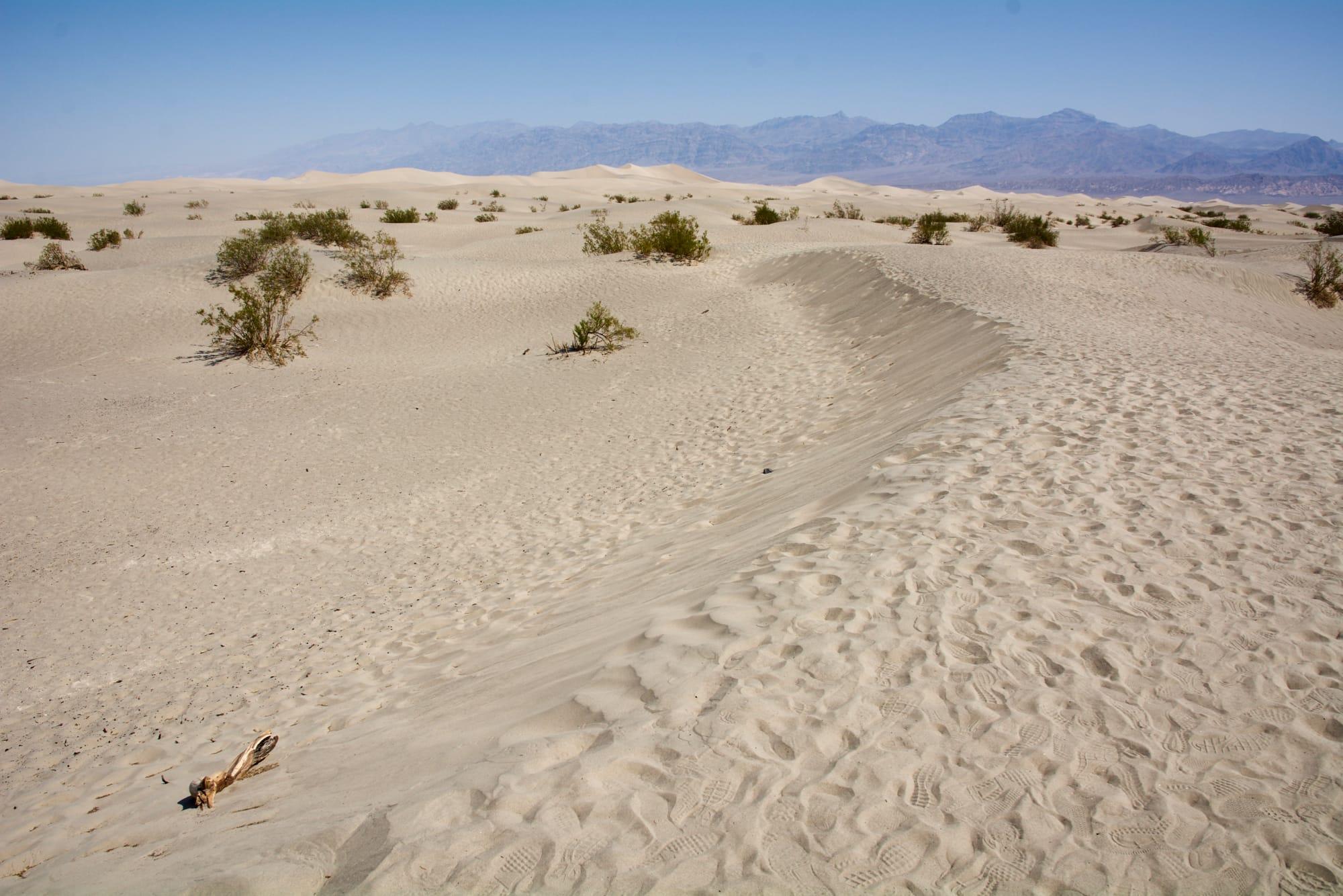 Mesquite Flat Saand Dunes